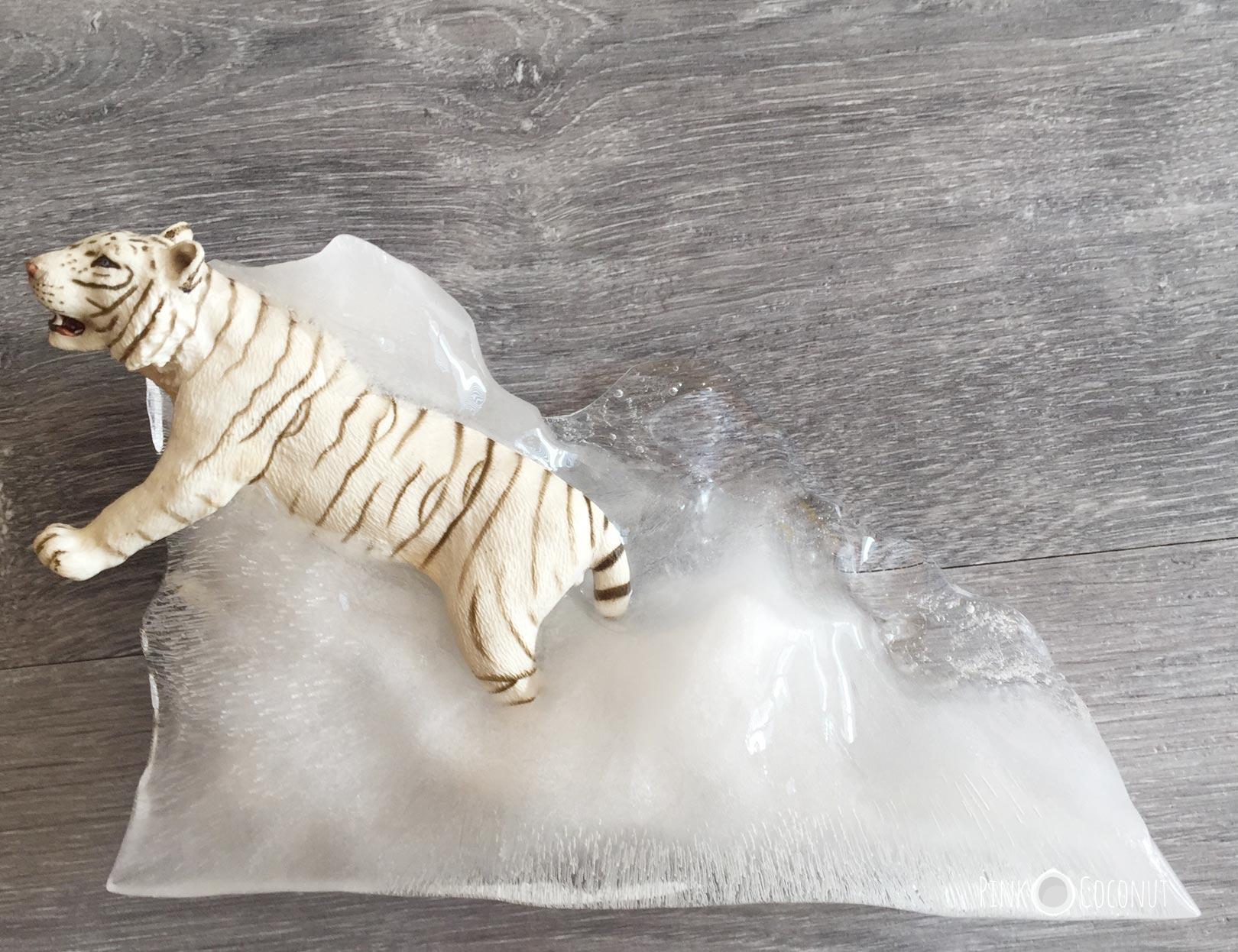 Photo d'un tigre blanc en jouet pris dans la glace pour illustré l'article intitulé : Les explorateurs de glace ! Une activité pour se rafraîchir avec les enfants pendant la canicule
