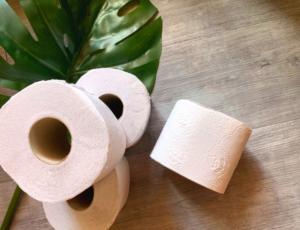 Air pq - le papier toilette qui plante des arbres - ecologique et sans plastique livré à la maison
